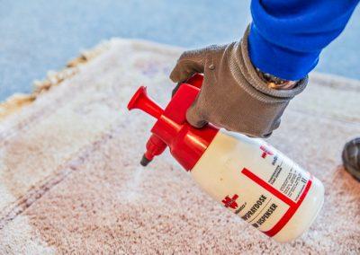 Einsprühen des Teppichs