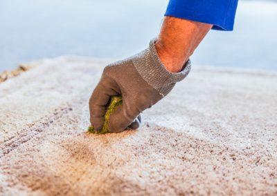 Abtupfen des Teppichs