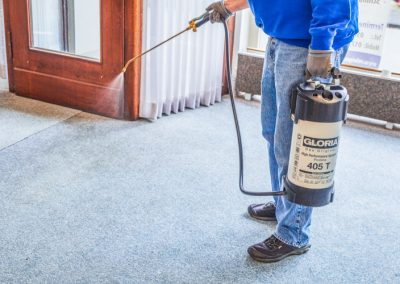 Der Teppichboden wird zur Reinigung eingesprüht